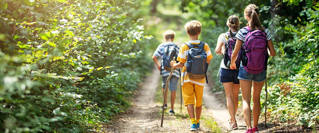 Wandeltocht met kinderen in het bos